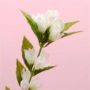 造花 リンドウ 白