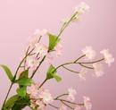 造花 ワスレナグサ ピンク