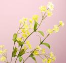 造花 ワスレナグサ 黄色